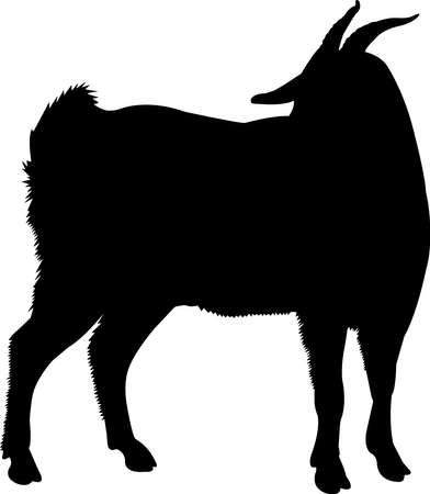 Myotonic Tennessee Fainting Goat Vector Silhouette