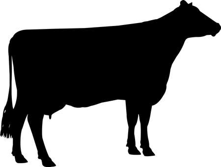 Brown Swiss Cow Vector Silhouette 矢量图像