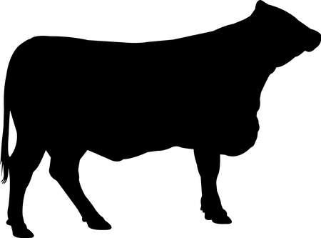 Santa Gertrudis Cow Vector Silhouette Illusztráció