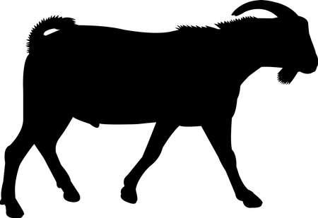 Spanish Goat Vector Silhouette