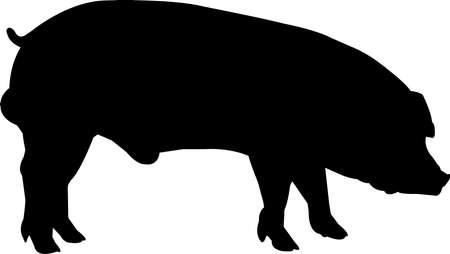 Duroc Pig Vector Silhouette Vektorgrafik
