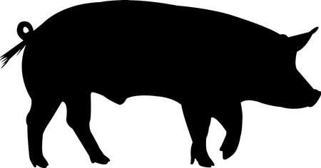 Tamworth Pig Vector Silhouette