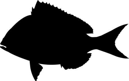 Porgy Fish Silhouette Vector Vecteurs