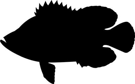 Tripletail Fish Silhouette Vector