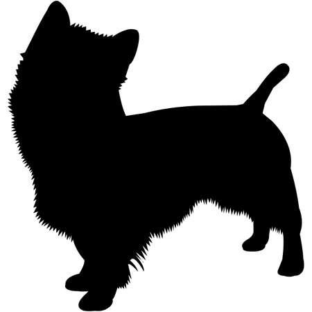 Australian Terrier  Silhouette Vector
