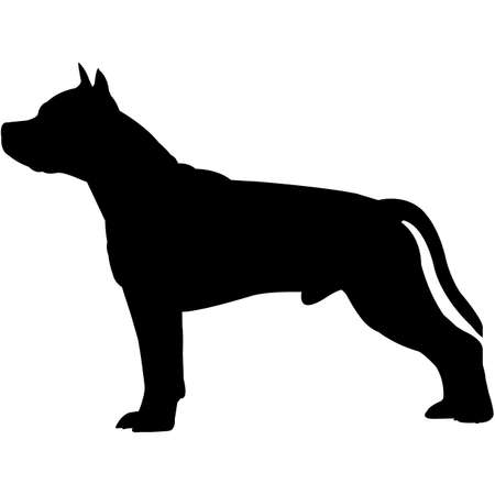 American Staffordshire Terrier  Silhouette Vector