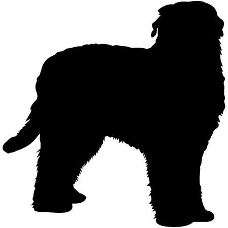 Black Russian Terrier  Silhouette Vector  イラスト・ベクター素材