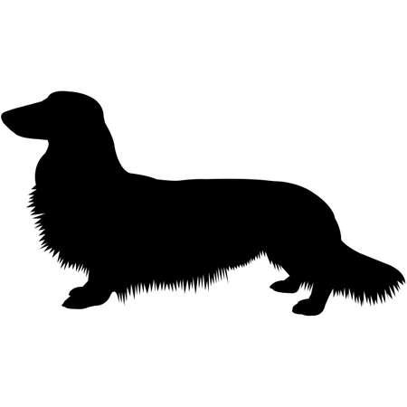 Dachshund (Longhaired) Silhouette Vector
