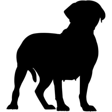 Dogue de Bordeaux Silhouette Vector Vecteurs