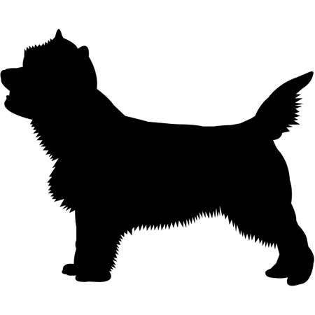 Cairn Terrier  Silhouette Vector