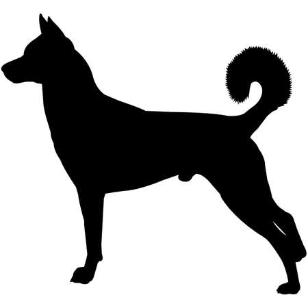 Canaan Dog  Silhouette Vector