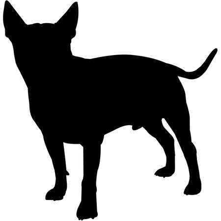 Miniature Bull Terrier  Silhouette Vector