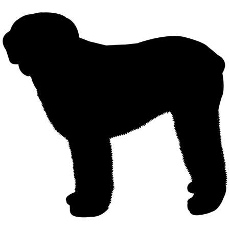 Old English Sheepdog Silhouette Vector  イラスト・ベクター素材