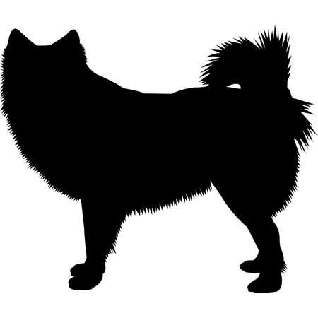 Finnish Lapphund  Silhouette Vector