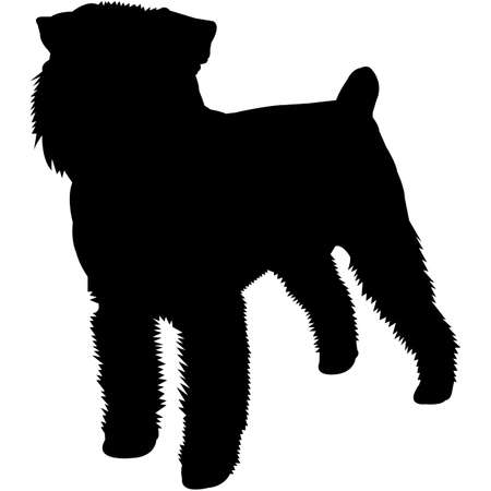 Brussels Griffon Silhouette Vector