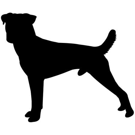 Parson Russell Terrier  Silhouette Vector