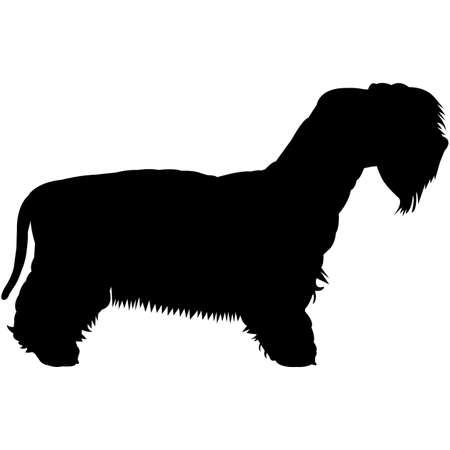 Cesky Terrier Silhouette Vector 写真素材 - 159055471