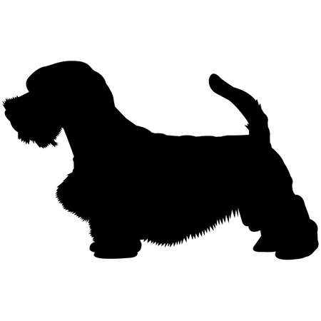 Sealyham Terrier Silhouette Vector