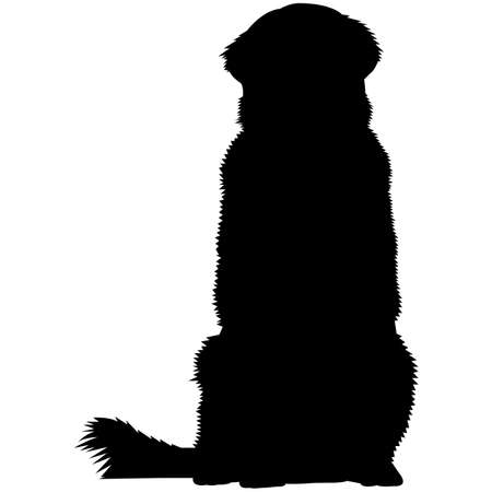 Leonberger  Silhouette Vector