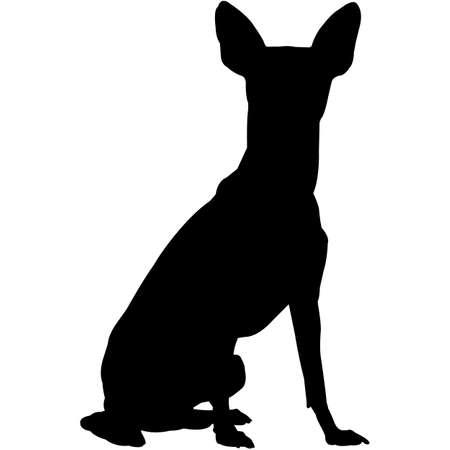 Miniature Pinscher Silhouette Vector Ilustración de vector