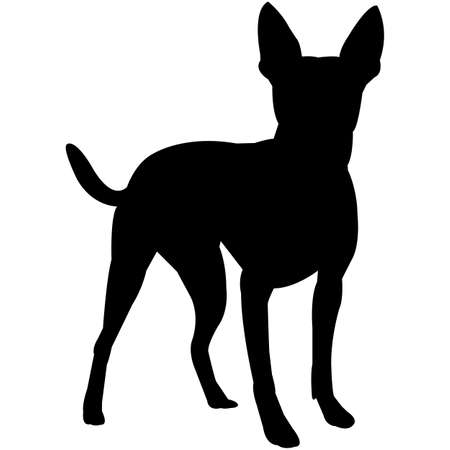 Rat Terrier  Silhouette Vector  イラスト・ベクター素材