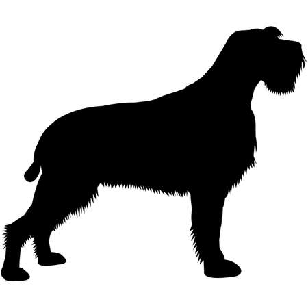 Wirehaired Pointing Griffon  Silhouette Vector Illustration