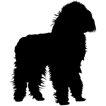 Toy Poodle  Silhouette Vector  イラスト・ベクター素材