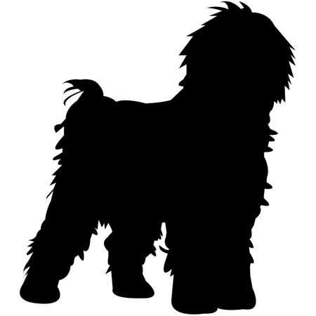 Spanish Water Dog  Silhouette Vector  イラスト・ベクター素材