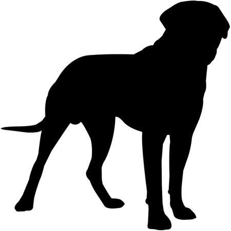 Mastiff  Silhouette Vector 写真素材 - 158516578