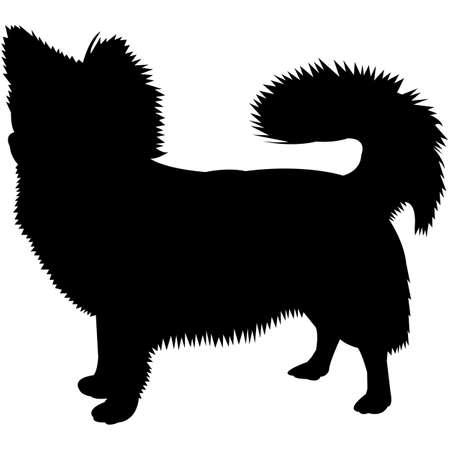 Long Coat Chihuahua Silhouette Vector