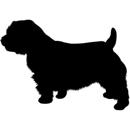 Norfolk Terrier Silhouette Vector