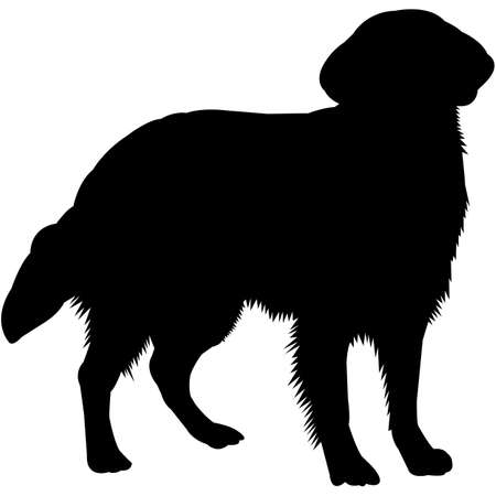 Flat-Coated Retriever  Silhouette Vector  イラスト・ベクター素材