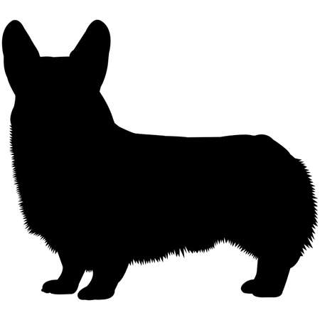 Pembroke Welsh Corgi  Silhouette Vector Illustration
