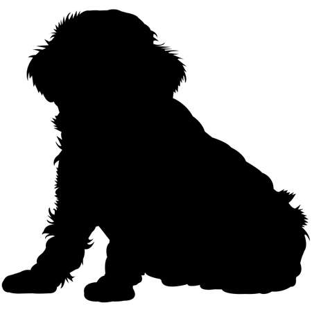 Toy Poodle  Silhouette Vector 矢量图像