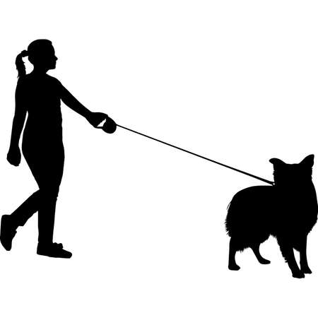 Woman Walking a Border Collie Dog Silhouette Vector