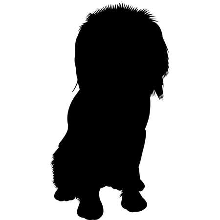 Cocker-pei dog Silhouette Vector Illustration