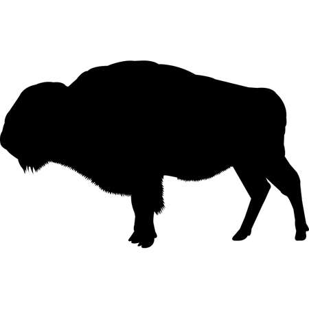 Bison Silhouette Vector