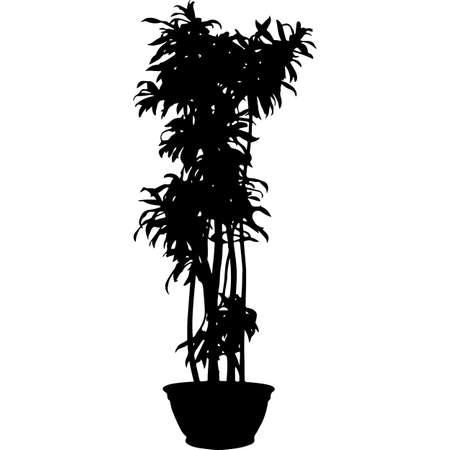 potted plant Silhouette Vector Vektorové ilustrace