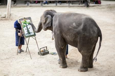 Artistieke Olifant maken van een tekening op olifanten zien, Chiangmai, Thailand
