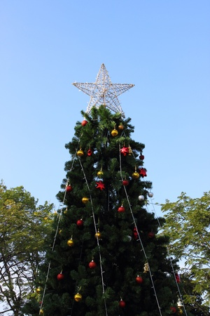 Star on the Christmas tree whith blue sky background photo