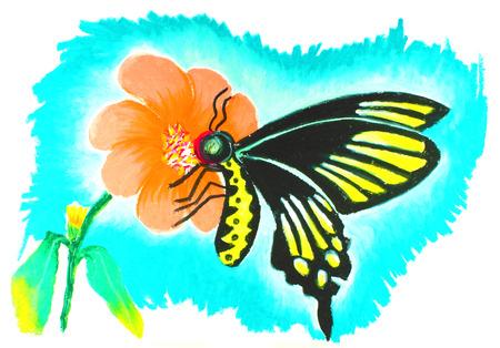 tekening vlinder: vlinder tekening