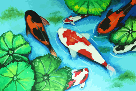 koi fish swiming in water painting background Illustration