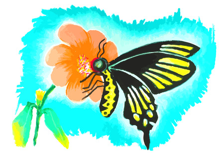 colorful butterfly with flower painting background