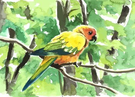 colorful parrot in green forest painting background
