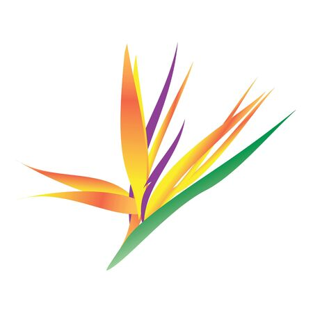This is a rasterized vector bird of paradise flower