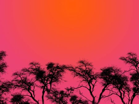 heatwave: An illustration of tree silhouettes over a red sky at night.