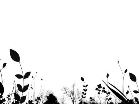summer foliage border / background Stock Photo - 537697