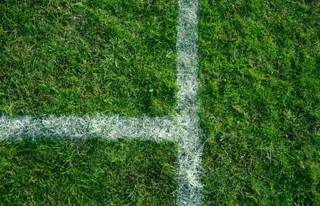 grassy field: Sports lines painted on a green grassy playing field.