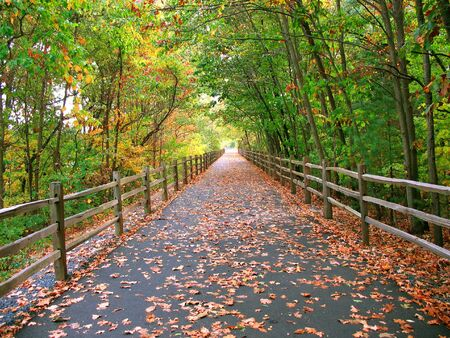 A long, wooded trail that goes through the woods in Connecticut - this one is used by cyclists, skaters, and even walkers. Stock Photo