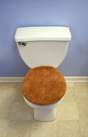 A modern looking toilet with a fuzzy, orange toilet seat cover. Stock Photo